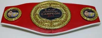 Belt2014I